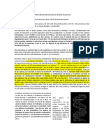 ESTRUCTURA MOLECULAR DE LOS ÁCIDOS NUCLEICOS