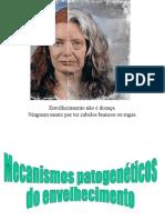 Mecanismos patogenéticos do envelhecimento