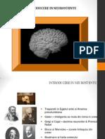 Introducere in Neurostiinte Curs 2 (1)