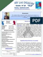 Boletin Rotary N° 29 Septiembre 2013