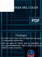 Fisio de Colon