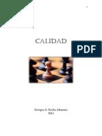 Calidad UI.pdf