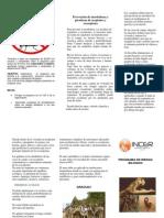 Folleto Programa Riesgo Biologico[1]