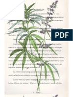 Know Cannabis Letter.