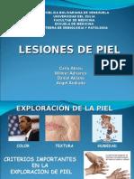 Lesiones de Piel 2013