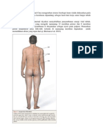 titik akupunktur