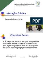 07. Interação Gênica_Junior