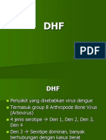 DHF II.ppt