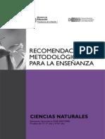 metodologias para la enseñanza de las ciencias sociales