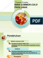 PPT Common Cold.ppt