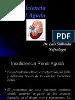 Insuficiencia Renal Aguda e Insuficiencia Renal Cronica (1)