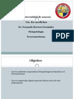 feocromocitoma fisiopato