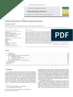1-s2.0-1-s2.0-S0734975010000212-main.pdf|S0734975010000212-main.pdf