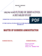 30804709-Derivatives-Project.doc