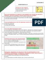 chestionar 21C.pdf