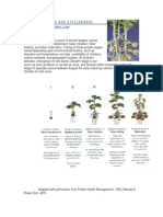 Growth and Development chapter- web.pdf