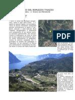 LAVORI IN ALVEO DEL BORLEZZA.pdf