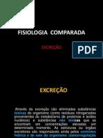 Fisiologia Comparada da Excreção
