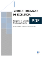3-Modelo Boliviano Categoria 3