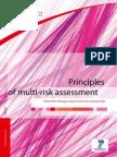 Principles of multi-risk assessment
