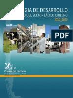 Estrategia Desarrollo Sectorial 2010 2020
