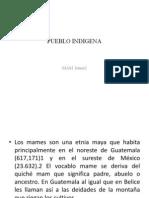 Pueblo Indigena
