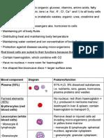 Circulatory System notes