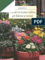Plante balcon-si-terasa.pdf
