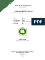 contoh laporan K1 KKN.docx
