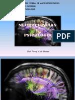 Fundamentos de Neurociencias & Psicologia histórico-cultural