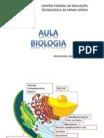 Aula_Bio