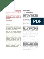 paper neurona biologica.docx