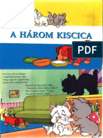 A 3 kiscica.pdf