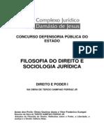 Curso Damásio - resumo Tércio (Estudos de Filosofia do Direito)
