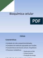 [4a Aula] Bioquimica Celular