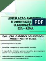 EIA - RIMA