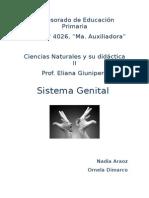 Sistema Genital (planificación) FINAL