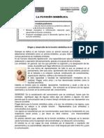 funciónsimbolica2