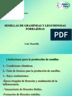 Semillas de Gramineas y Leguminosas Forrajeras