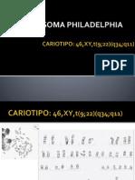 Cromosoma Philadelphia Pp
