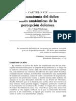 Neuroanatomía del Dolor (Vilallonga)