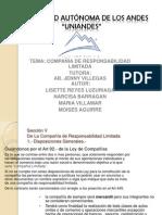 COMPAÑIA DE RESPONSABILIDAD LIMITADA LISETTE