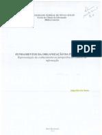 organização da informação.pdf