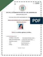Proyecto ICC