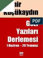 Demir Kucukaydin - Gezi Yazilari Derlemesi