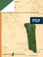 Dickinson Oliver - El Egeo - De La Edad De Bronce A La Edad De Hierro.pdf