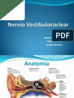 Nervio Vestíbulococlear