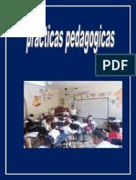 Reflexion Practicas Pedagogicas Dubis