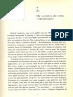 Pedro M. Frade (1992), 'Os limites de uma perturbação'.pdf
