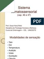 Aula 4 - Sistema Somatossensorial - Unioeste 2013 (Nxpowerlite) (Nxpowerlite)